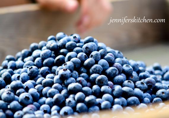Blueberries Fresh Blueberries