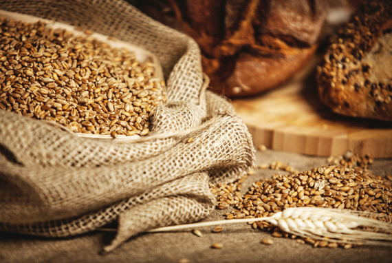 Grains that Contain Gluten