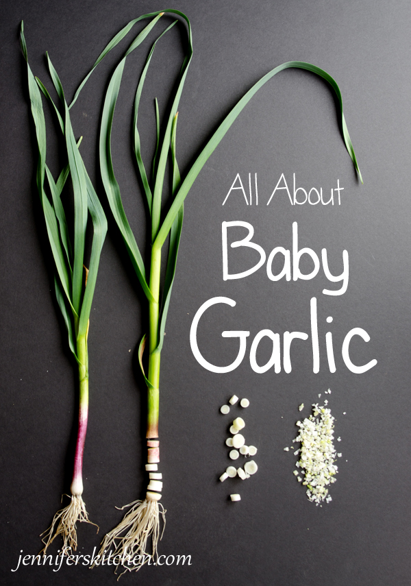 What is Baby Garlic