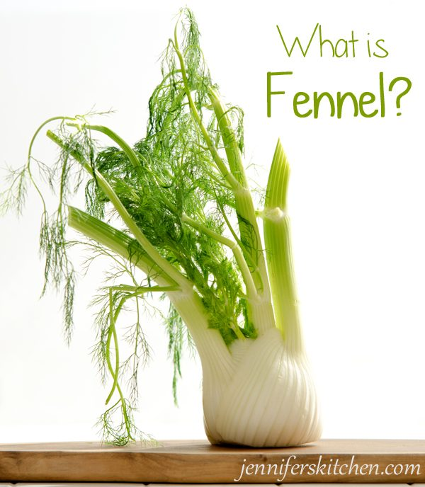 What-is-Fennel?
